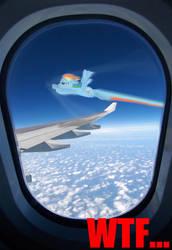 MLP Rainbow dash WTF... by AnimaP-NetoLins