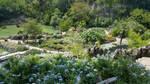 Japanese Tea Garden 2 by WisTex