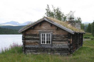 log cabin II by two-ladies-stocks