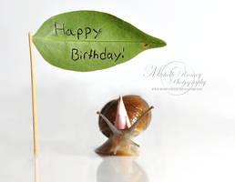 Happy Birthday by MichelleRamey