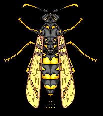 Wasp by Imkihca