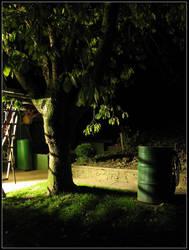 Garden At Midnight by slaute
