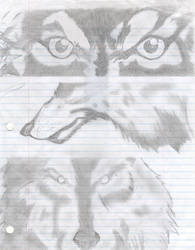 Wolf by Seikopathik
