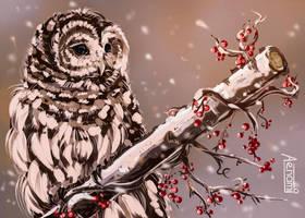 Owl by Aenami
