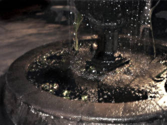 Dominical fountain II by euronymus-photo
