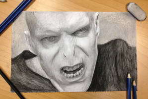 lord voldemort by AtomiccircuS