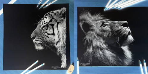 Tiger/ Lion Inverted drawing by AtomiccircuS