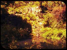 Central Park 1 by bluehazerd