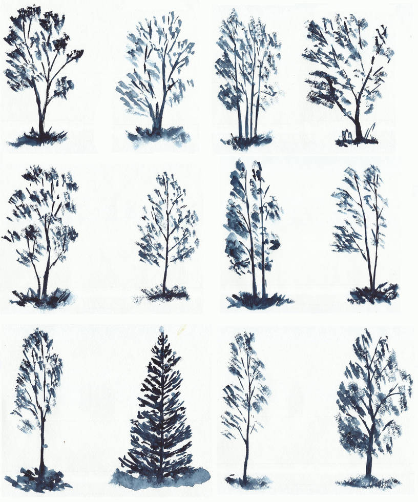Trees studies/sketches by tulvit