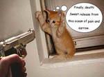 kitty by mathewsleep