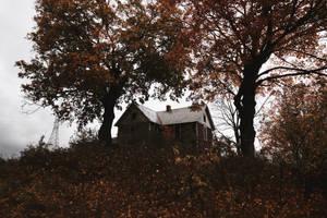Red House by SkylerBrown