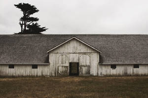 Pierce Point Ranch by SkylerBrown