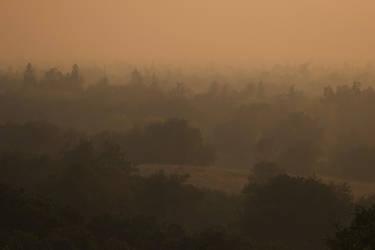 California Smoke by SkylerBrown