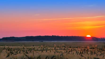 sunrise over the field by edinaB