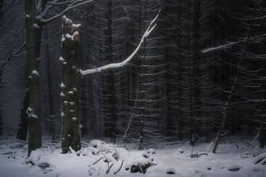 winter tale by edinaB