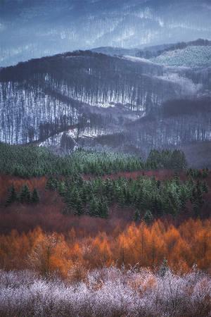 winter dream... by EdinaBaltas