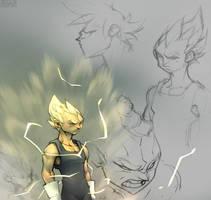DBZVegetaRough by GrayShuko