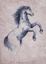 horse by VirginieSiveton