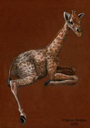 Baby girafe by VirginieSiveton
