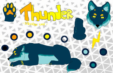 Oc Reference : Thunder by CrystalAzzy