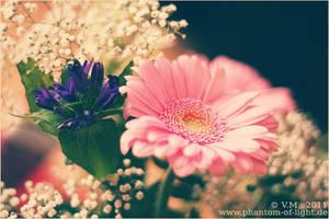 ::flowers pink.violet.white:: by Phantom-of-light