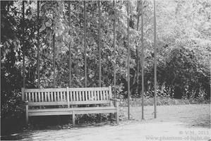::bench b/w:: by Phantom-of-light