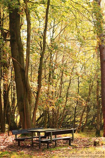 :: Picknick im Wald :: by Phantom-of-light