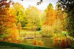 :: colours of autumn :: by Phantom-of-light