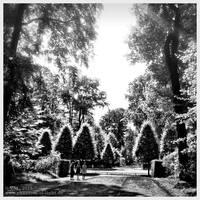 :: Schlosspark Benrath :: by Phantom-of-light