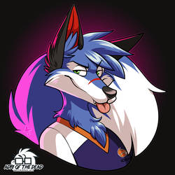 sonicfox5000 by AdriOfTheDead