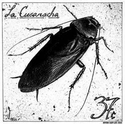 La Cucaracha by Gorrem