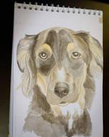 Sammy Dog by SophieArabella