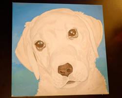 Labrador by SophieArabella