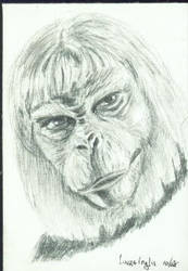 Planet of the Apes by LauraInglis