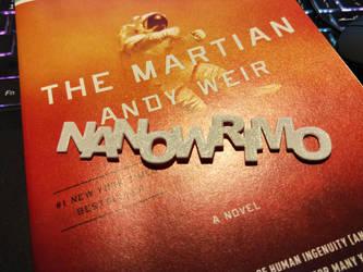 NaNoWriMo bookmark by avarenity