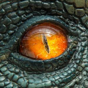 GreenDinosaurSkin's Profile Picture