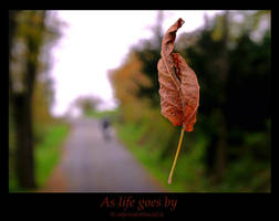 As life goes by by colpewole