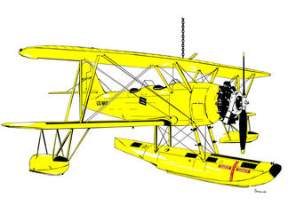 Naval Aircraft Factory N3N Canary by bowdenja