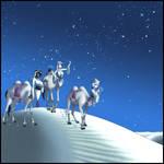 Wise Camel Women by gamera1985