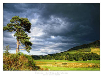 Before the Thunderstorm by denise-g