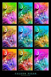 Colour Spree by denise-g