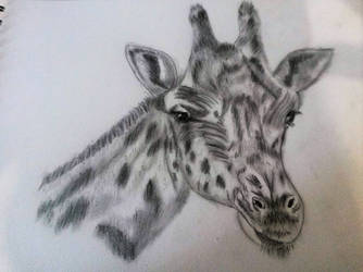 Giraffe graphite pencils by isabel56