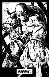 TMNT: Raphael by GeeHALE