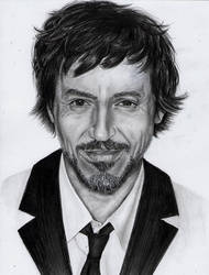 Robert Downey's portrait by Hilly16