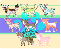 [Cheap point adopts] OPEN by Pina-Puppy