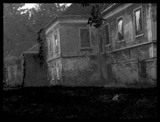 castle Veliki Bukovec in bw by carrolsmith
