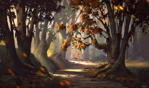 autumn by yohan-haash