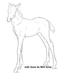 foal line 1 by Pashiino