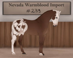 Nevada Warmblood 239 by Pashiino
