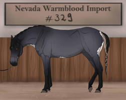 Nevada Warmblood Import 329 DeadChesh by Pashiino